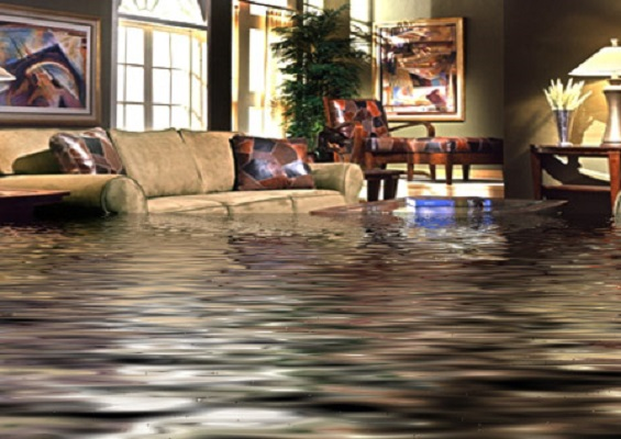 Express Water Damage Tampa, FL 33601