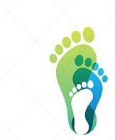 Podiatry Centers Tampa, FL 33601